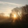 Ein neuer Morgen - Morning has Broken © by angieconscious  / pixelio.de